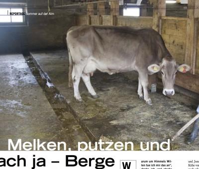 Melken, putzen und ach ja – Berge (Alpin)